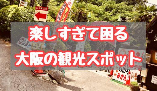 大阪で・子どもたちがめっちゃ笑う場所「城山オレンヂ園(山のおやじ)」